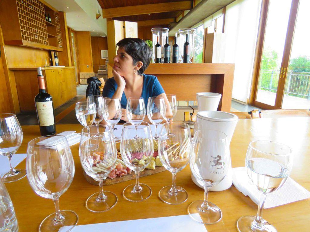 Degustação de vinhos na vinícola Odjfell no Chile