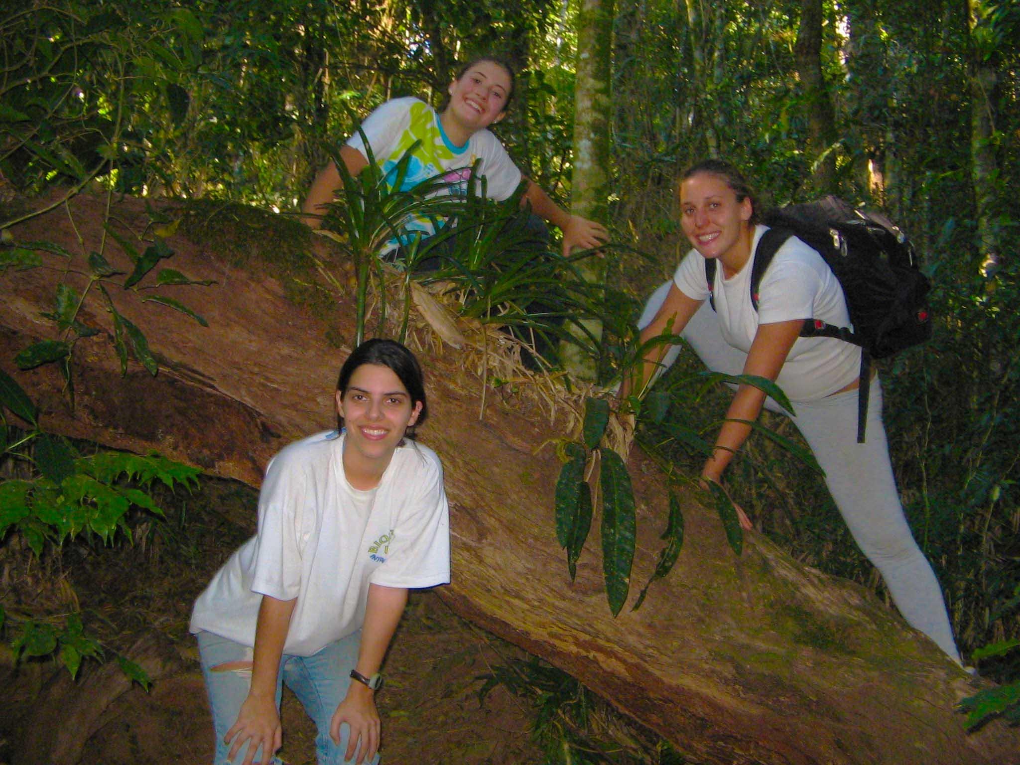 Obstáculos na trilha do Pico do Baepi