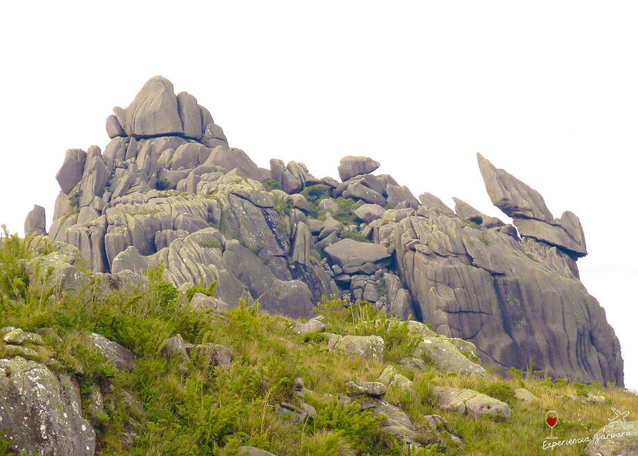 Asa de Hermes - Parte Alta Parque Nacional do Itatiaia