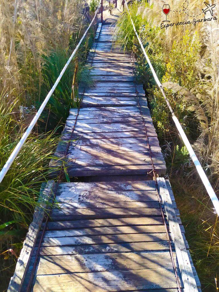 Parte Alta Parque Nacional do Itatiaia no inverno
